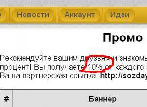 Сколько можно получить от партнерской программы в sozdaysayt
