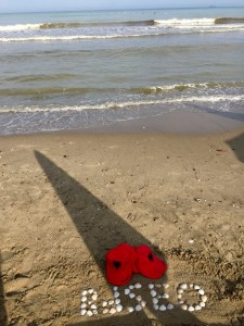 Bdseo.ru в Албании, на берегу моря