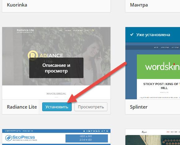 Демо шаблона wordpress. Как посмотреть