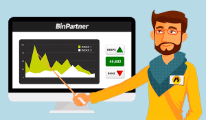 Заработок в Binpartner