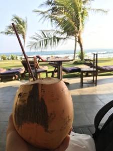 Золотой кокос - сок на Шри Ланке